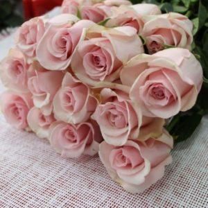 Роза 40см Алматы