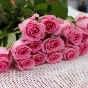 Роза Алматы 60см